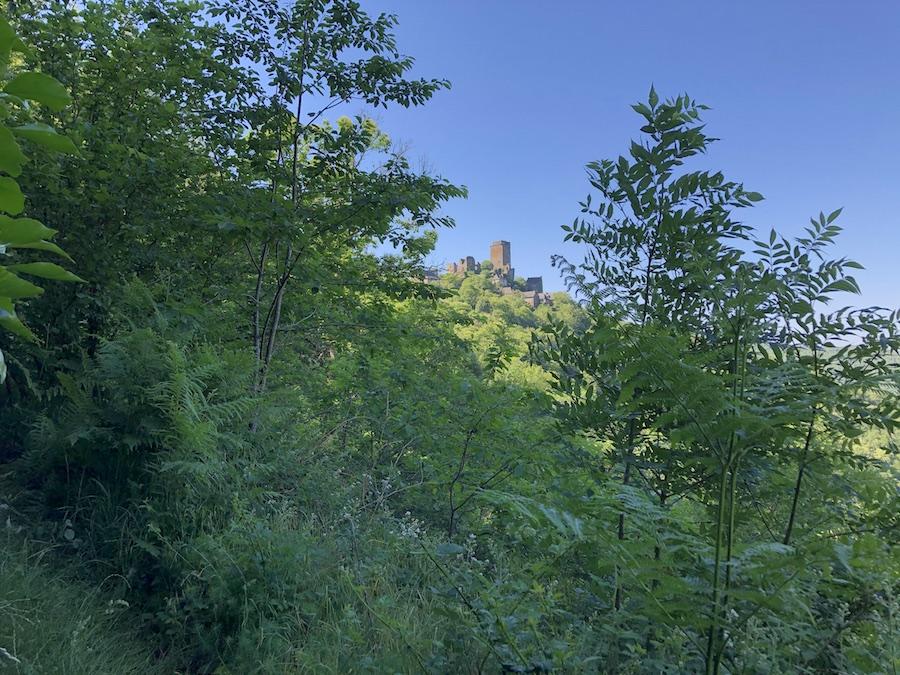 Randonnée quad La Barrézienne Aveyron