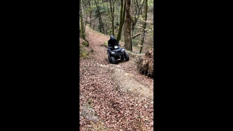 Quad dans les bois